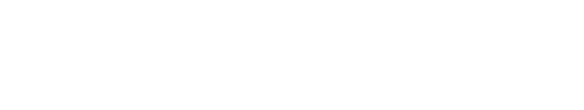 Theon Data